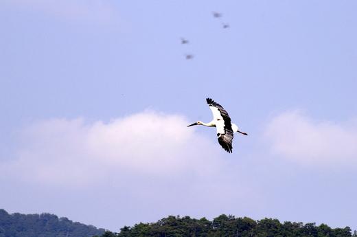 2008-10-10 但馬海岸 102.JPG